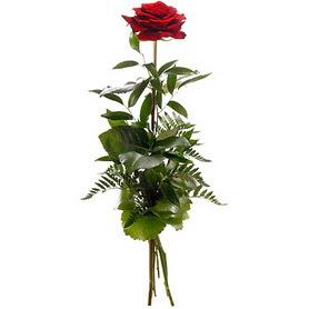 Amasya online çiçekçi , çiçek siparişi  1 adet kırmızı gülden buket