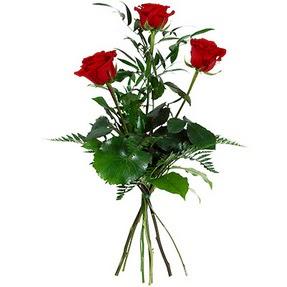 Amasya uluslararası çiçek gönderme  3 adet kırmızı gülden buket