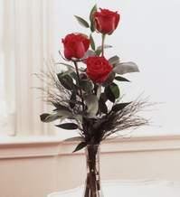 Amasya internetten çiçek satışı  Vazoda 3 adet güzel gül