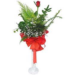 Amasya anneler günü çiçek yolla  Cam vazoda masum tek gül