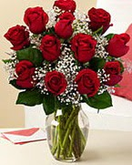 Sevgilime hediye 9 adet 1.ci kalite gül  Amasya anneler günü çiçek yolla