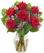 Kız arkadaşıma hediye 6 kırmızı gül  Amasya internetten çiçek siparişi
