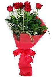Çiçek yolla sitesinden 7 adet kırmızı gül  Amasya internetten çiçek satışı