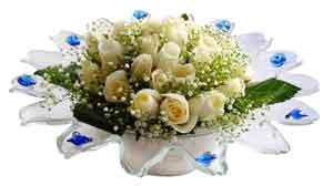 Amasya çiçek online çiçek siparişi  11 adet Beyaz güller özel cam tanzim