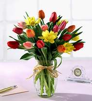 Amasya çiçekçiler  Karisik kaliteli lale demeti
