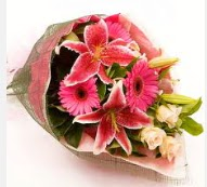 1 dal kazablanka ve mevsim çiçekleri  Amasya internetten çiçek siparişi