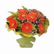 Amasya çiçek yolla  11 adet seçme gerbera çiçegi