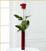 Vazo içerisinde 1 adet kırmızı gül  Amasya internetten çiçek siparişi