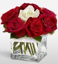 Tek aşkımsın çiçeği 8 kırmızı 1 beyaz gül  Amasya uluslararası çiçek gönderme