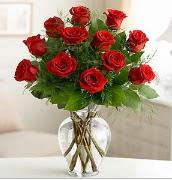 Vazo içerisinde 12 kırmızı gül  Amasya çiçek satışı