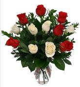 Vazo içerisinde 6 kırmızı 6 beyaz gül  Amasya hediye çiçek yolla