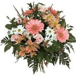 Amasya ucuz çiçek gönder  Karisik mevsim çiçekleri