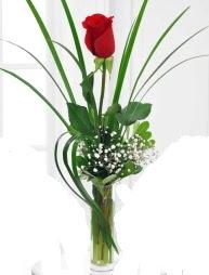 Cam içerisinde 1 kırmızı gül  Amasya çiçek gönderme sitemiz güvenlidir