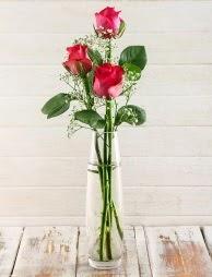 Cam içerisinde 3 kırmızı gül  Amasya çiçek satışı