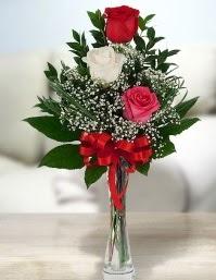 Camda 2 kırmızı 1 beyaz gül  Amasya ucuz çiçek gönder