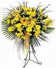 Amasya yurtiçi ve yurtdışı çiçek siparişi  Sari kazablanka Ferforje