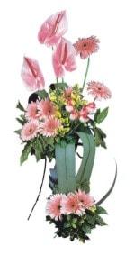Amasya güvenli kaliteli hızlı çiçek  Pembe Antoryum Harikalar Rüyasi