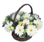 Amasya çiçek siparişi sitesi  Sepet içinde  gerbera aranjmani
