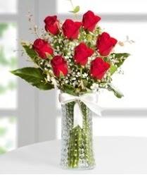 7 Adet vazoda kırmızı gül sevgiliye özel  Amasya çiçek siparişi sitesi