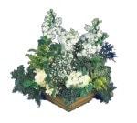 Amasya çiçek siparişi vermek  Beyaz sebboy ve gül aranjmani