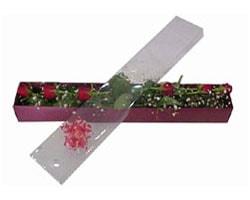 Amasya anneler günü çiçek yolla   6 adet kirmizi gül kutu içinde