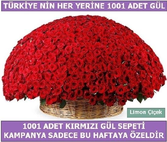 1001 Adet kırmızı gül Bu haftaya özel  Amasya İnternetten çiçek siparişi
