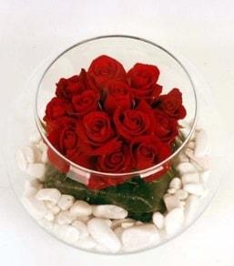 Cam fanusta 11 adet kırmızı gül  Amasya çiçek gönderme