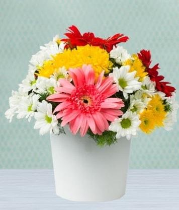 Seramik Vazoda Gelbera ve Papatya  Amasya çiçek gönderme