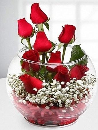 Kırmızı Mutluluk fanusta 9 kırmızı gül  Amasya çiçek siparişi sitesi
