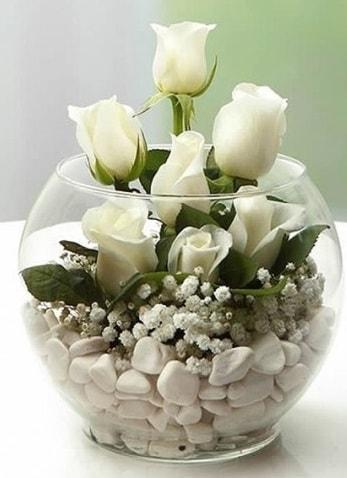Beyaz Mutluluk 9 beyaz gül fanusta  Amasya çiçek siparişi sitesi