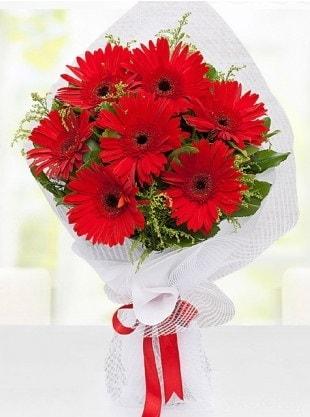 Kırmızı Gelbera Buketi  Amasya internetten çiçek siparişi