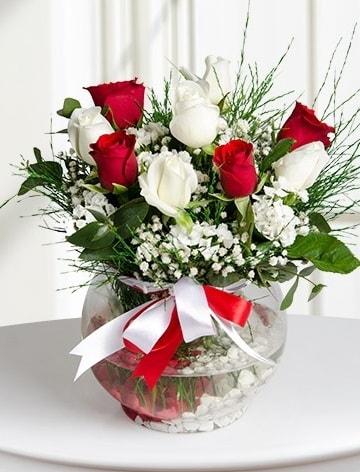 Aşk Küresi  5 beyaz 5 kırmızı gül fanusta  Amasya internetten çiçek satışı