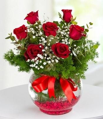 fanus Vazoda 7 Gül  Amasya çiçek , çiçekçi , çiçekçilik