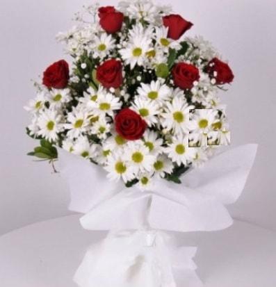 7 adet kırmızı gül ve papatyalar krizantem  Amasya internetten çiçek satışı