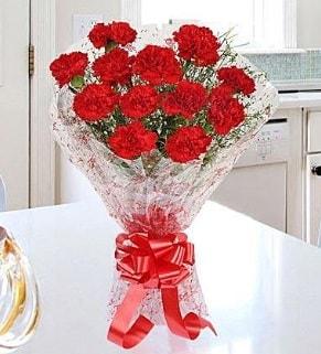 12 adet kırmızı karanfil buketi  Amasya İnternetten çiçek siparişi