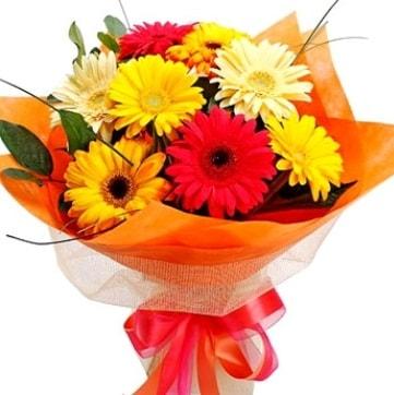 9 adet karışık gerbera buketi  Amasya çiçek , çiçekçi , çiçekçilik