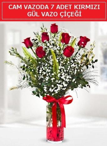 Cam vazoda 7 adet kırmızı gül çiçeği  Amasya çiçek gönderme sitemiz güvenlidir