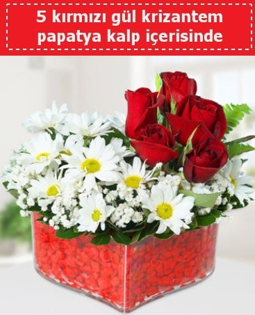 mika kalp içerisinde 5 kırmızı gül papatya  Amasya çiçek gönderme