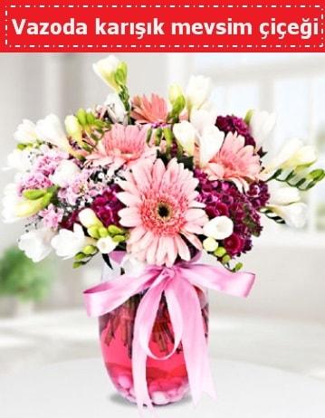 Vazoda karışık mevsim çiçeği  Amasya çiçek , çiçekçi , çiçekçilik