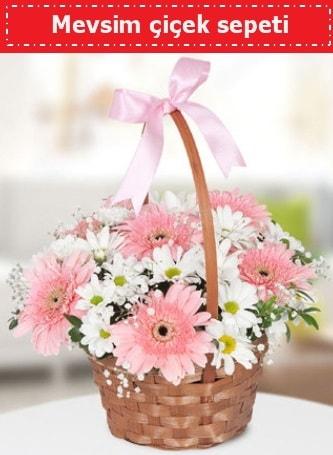Mevsim kır çiçek sepeti  Amasya çiçek , çiçekçi , çiçekçilik