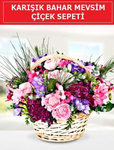 Karışık mevsim bahar çiçekleri  Amasya ucuz çiçek gönder