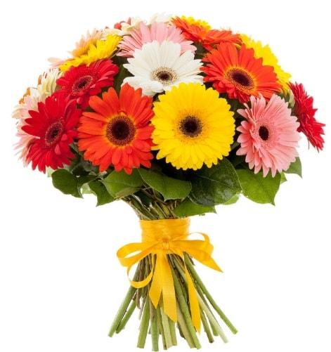 Gerbera demeti buketi  Amasya çiçek satışı