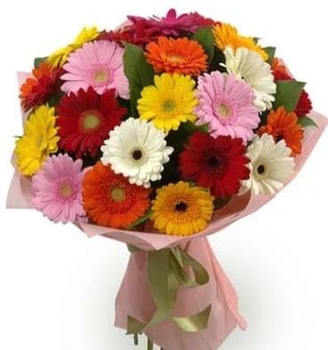 Karışık büyük boy gerbera çiçek buketi  Amasya çiçek satışı